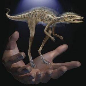 Откриха миниатюрен древен предшественик на динозварите в Мадагаскар
