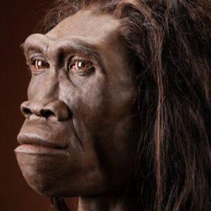 Учени са извлекли най-стария генетичен материал от изчезнал човешки вид