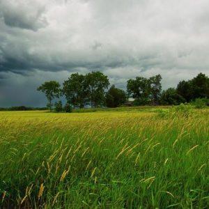 Облачно, жълт код за валежи в 5 области